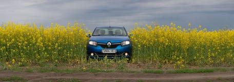 GOMEL, WEISSRUSSLAND - 24. Mai 2017: das blaue Auto wird auf dem Rapssamenfeld geparkt Lizenzfreie Stockfotos