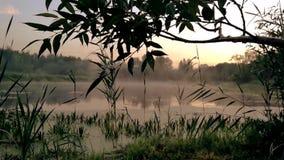 Gomel, Wit-Rusland de mist spreidt over het water uit bij dageraad stock video