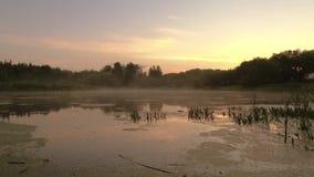 Gomel, Wit-Rusland de mist spreidt over het water uit bij dageraad stock videobeelden