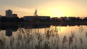 Gomel, Wit-Rusland de zonstijgingen van de stad bij dageraad stock video