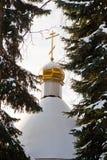 Gomel, Wit-Rusland, 26 Januari, 2006: Toren van Paleis van rumyantsev-Paskevich, paleis en parkensemble, de winterlandschap Royalty-vrije Stock Afbeelding