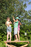 Gomel, Wit-Rusland - JULI 4, 2013: De kinderenhulp verzamelt kersenoogst stock foto's