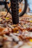 Gomma del mountain bike sulla terra Fotografia Stock Libera da Diritti