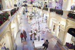 GOMMA di Mosca Immagine Stock Libera da Diritti