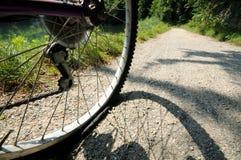 Gomma piana della bicicletta Immagini Stock Libere da Diritti