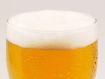 Gomma piuma della birra Fotografie Stock Libere da Diritti