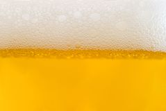 Gomma piuma su birra chiara fotografia stock