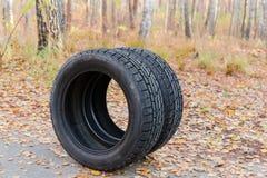 Gomme di automobile di inverno con il passo asimmetrico contro della foresta di autunno immagine stock