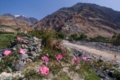 Gompa在Padum城镇, Ladakh 图库摄影