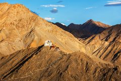 Gompa e forte de Namgyal Tsemo Ladakh, Índia Imagens de Stock