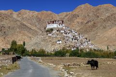 Gompa - monasterio budista tibetano en Ladakh imágenes de archivo libres de regalías