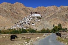 Gompa - tibetan buddyjski monaster w Ladakh Zdjęcia Royalty Free