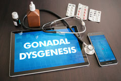 Gonadal dysgenesis (endocrine disease) diagnosis medical concept Royalty Free Stock Photography