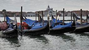 Gondeln geparkt nahe Grand Canal -Ufer Venedig, Italien stock video footage