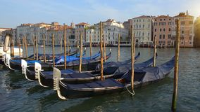 Gondeln in Grand Canal stock video