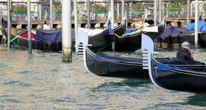 Gondeln segeln das adriatische Meer nahe Rialto-Brücke in Venedig herein Stockfotos
