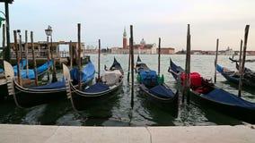 Gondeln in Venezia, Italien stock footage
