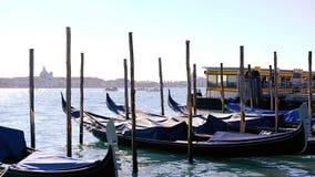 Gondels in Venetië Laguna, bestemming stock video