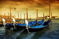 Gondola Parking, Venice, Italy Royalty Free Stock Photo