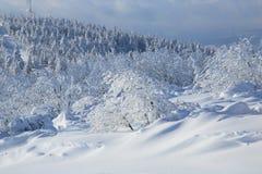 Gondola in winter Stock Images