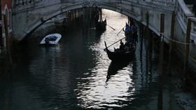 Gondolas on canal in Venice. stock video