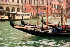 Gondolas docked in the Grand Canal Stock Images
