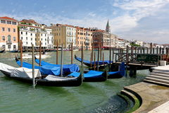 Gondolas docked in a row in Venice, Italy Royalty Free Stock Images