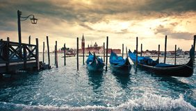 Gondolas in the early morning pigeon Royalty Free Stock Image