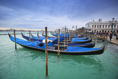 Gondolas in front of Riva degli Schiavoni Stock Photography