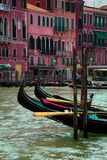 Gondolas on the Grand Canal royalty free stock photography