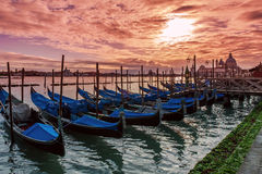 Gondolas on Grand canal at sunset in Venice. Royalty Free Stock Image