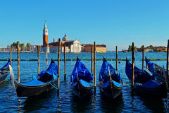 Gondolas Lined Up in Venice Royalty Free Stock Images