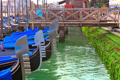 Gondolas moored in row on Grand canal in Venice. Royalty Free Stock Photography