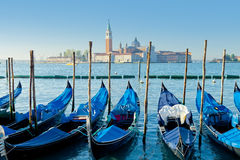 Gondolas moored Royalty Free Stock Image