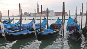 Gondolas moored by Saint Mark square in sunrise stock video footage