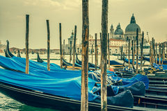 Gondolas moored by Saint Mark square. Venice, Italy, Europe Royalty Free Stock Photo