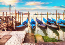Gondolas moored by Saint Mark square in Venice, Italy Royalty Free Stock Images