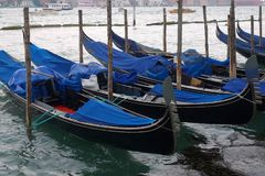 Gondolas Moored in Venetian Lagoon Stock Images