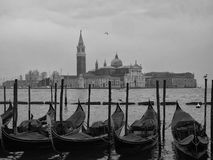 gondolas moored in venice outside the doges palace in san marco Stock Images