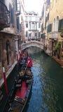 Gondolas. Parked in venice Royalty Free Stock Photography