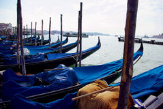 Gondolas resting, Venice. 2006, Italy royalty free stock images