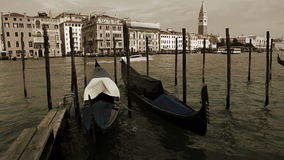 Gondolas rocking on the waves with Piazza San Marco on the background in Venecia, Italy stock video footage