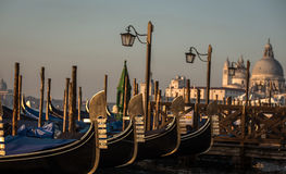 Gondolas at  san marco Stock Images