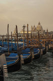 Gondolas in San Marco Square, Venice Italy Stock Image