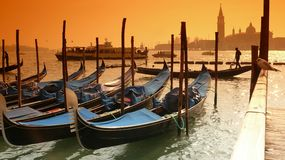Gondolas and a seagull Royalty Free Stock Photography