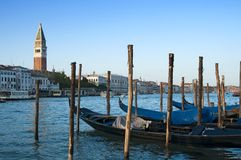Gondolas and St Mark's Campanile, Venice, Italy Stock Image