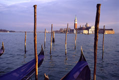 Gondolas in Venice Stock Image