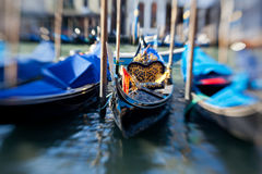 Gondolas in Venice Stock Photo