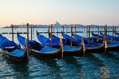 Gondolas in Venice at dawn Stock Image