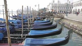 Gondolas Venice stock video